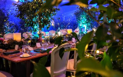 Corporate and Gala Dinners